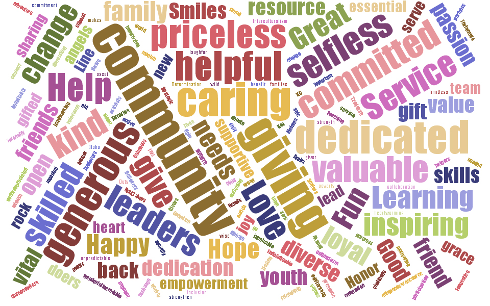 Volunteering Word Cloud Results | eVolunteerism.com: The ...